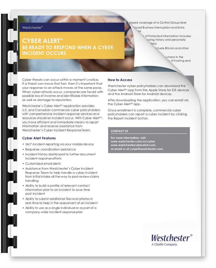 Cyber Alert™ - PDF